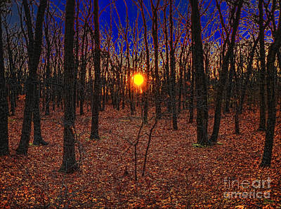 Abstract Photograph - Unenchanted Forest by Jeff Breiman