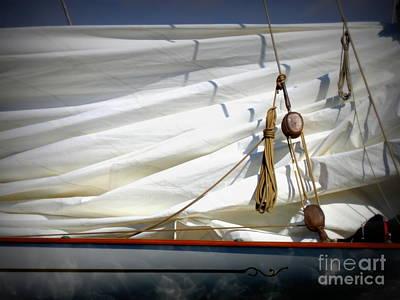 Unfurled Sail Print by Lainie Wrightson