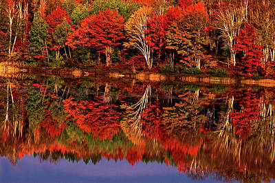 Vivid Fall Colors Photograph - United States, Michigan, Upper Peninsula by Jaynes Gallery