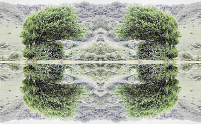 Kaleidoscopic Photograph - Unnatural 40 by Giovanni Cafagna