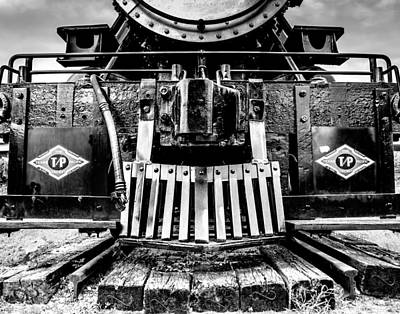 Up In My Grill B And W Print by Geoff Mckay