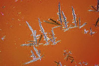Crystalline Photograph - Uric Acid Crystals by John Durham