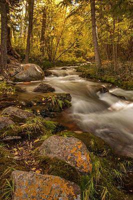 Crestone Photograph - Usa, Colorado Autumn Colors On Crestone by Jaynes Gallery