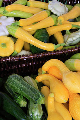 Property Released Photograph - Usa, Georgia, Savannah, Organic Squash by Joanne Wells