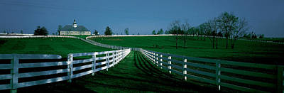 Springtime Photograph - Usa, Kentucky, Lexington, Horse Farm by Panoramic Images