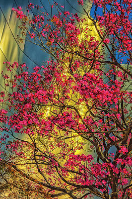 Usa, Los Angeles, Ca, The Disney Center Print by Rona Schwarz