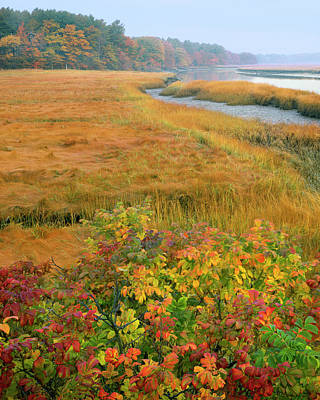 Tidal River Photograph - Usa, Maine, Kennebunkport by Jaynes Gallery