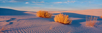Windswept Photograph - Usa, New Mexico, White Sands, Sunset by Panoramic Images