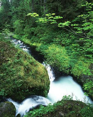 Usa, Oregon, Eagle Creek, View Print by Adam Jones