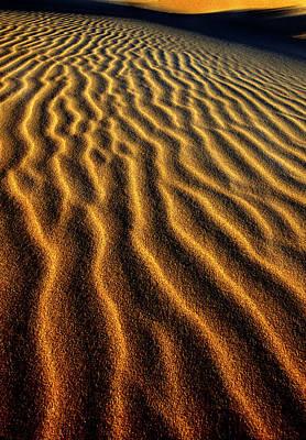 Oregon Dunes National Recreation Area Photograph - Usa, Oregon, Oregon Dunes National by Jaynes Gallery
