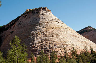 Zion National Park Photograph - Usa Utah, Checkerboard Mesa In Zion by Lee Foster