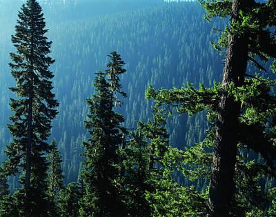 Usa, Washington State, View Of Mount Print by Scott T. Smith