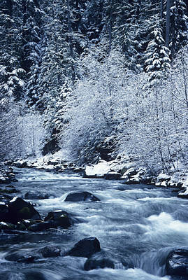Usa, Willamette National Forest Oregon Print by Greg Vaughn
