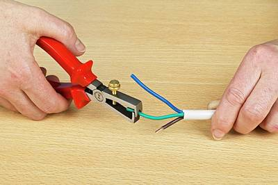Using Wire Strippers Print by Dorling Kindersley/uig