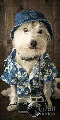 Hawaii Dog Photograph - Vacation Dog Phone Case by Edward Fielding