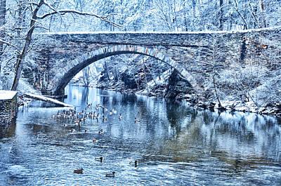 Phila Digital Art - Valley Green Ducks In Winter by Bill Cannon