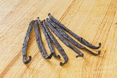 In Focus Photograph - Vanilla Beans On A Wooden Surface by Colin and Linda McKie