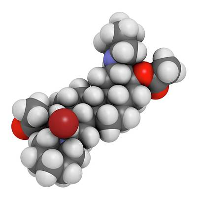 Vecuronium Bromide Muscle Relaxant Print by Molekuul