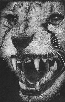 Cheetah Drawing - Vehemence by Barbara Keith