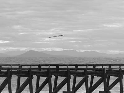 Liberte Photograph - Vent Du Large by Leon Frederique