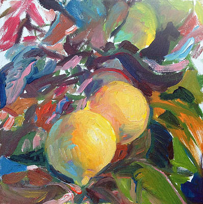 Ventura Lemons Print by Timothy Chambers