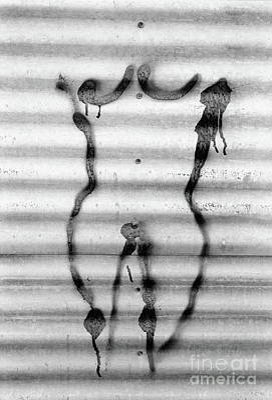 Venus Of The Swichyard Print by Joe Jake Pratt