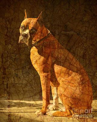 Vermeer's Dog Print by Judy Wood