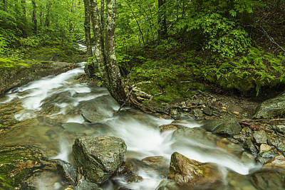White River Scene Photograph - Vermont Forest River Waterfall Mount Mansfield by Andy Gimino