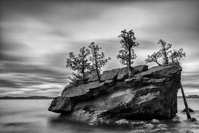 Vermont Lake Champlain Boulder Trees Black And White Print by Andy Gimino