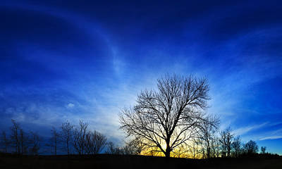 Art And Energetic Photograph - Vernal Sunset 2 by Bill Caldwell -        ABeautifulSky Photography