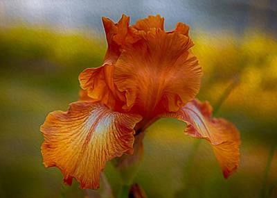 Georgia Okeefe Mixed Media - Vibrant Orange Iris by Omaste Witkowski