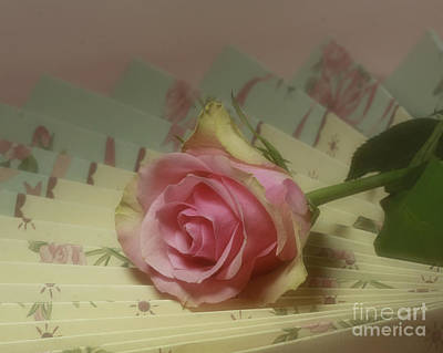 Victorian Rose Print by Inspired Nature Photography Fine Art Photography