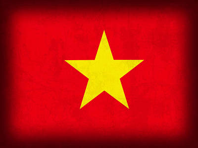 Vietnamese Mixed Media - Vietnam Flag Distressed Vintage Finish by Design Turnpike