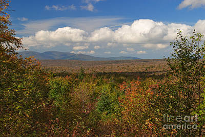 Forest Photograph - View From Kelly Stand Road by Charles Kozierok