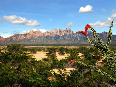 Las Cruces Digital Art - View From Roadrunner by Kurt Van Wagner