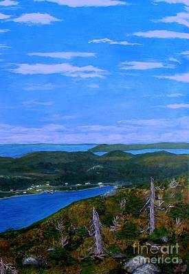 View From Sugarloaf Hill Ship Harbour Bottom Print by Barbara Griffin