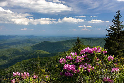 View From The Blue Ridge Parkway  Spring 2010 Print by Matthew Turlington