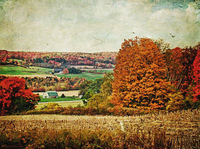 Autumn Scene Digital Art - View From The Hill... by Lianne Schneider