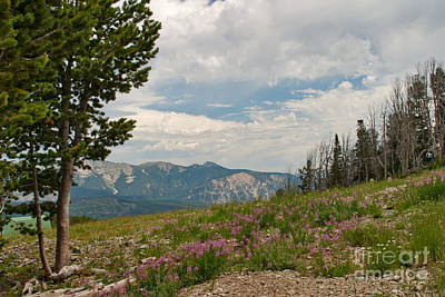 Mountains Photograph - View From The Top by Charles Kozierok