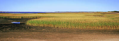 Cape Cod Photograph - View Of Crop In Field, Cape Cod by Panoramic Images