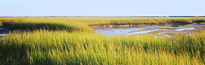 Cape Cod Photograph - View Of Crop In The Field, Cape Cod by Panoramic Images