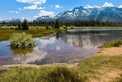 View Of Mount Tallac From Taylor Creek Beach Lake Tahoe Print by LeeAnn McLaneGoetz McLaneGoetzStudioLLCcom
