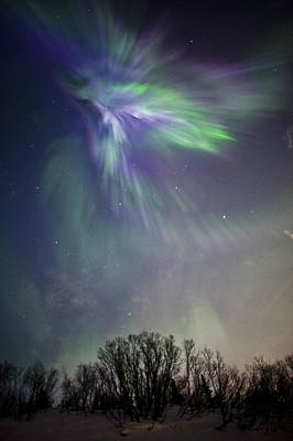 Royalty Free Images Photograph - View Of The Aurora Borealis Over The by Jim Kohl