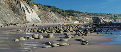 Mendocino Photograph - View Of The Bowling Ball Beach by Panoramic Images