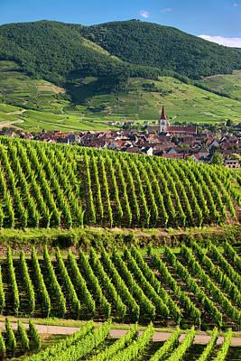 Grand Cru Photograph - Village Of Ammerschwihr Surrounded by Brian Jannsen