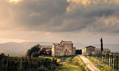 Siena Photograph - Vineyard In Tuscany Italy by Robert Leon