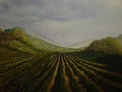 Beaujolais Painting - Vineyard by Mark Golomb