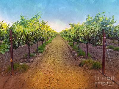Vineyards Mixed Media - Vineyard Road by Shari Warren