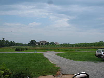 Wine Photograph - Vineyards In Va - 121224 by DC Photographer