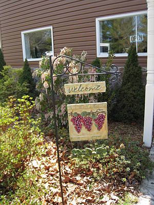 Vineyards In Va - 121260 Print by DC Photographer